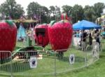 Berry Go Round